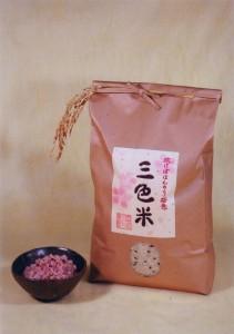 三色米(ご飯つき)