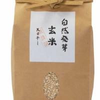 自然発芽玄米(1kg)