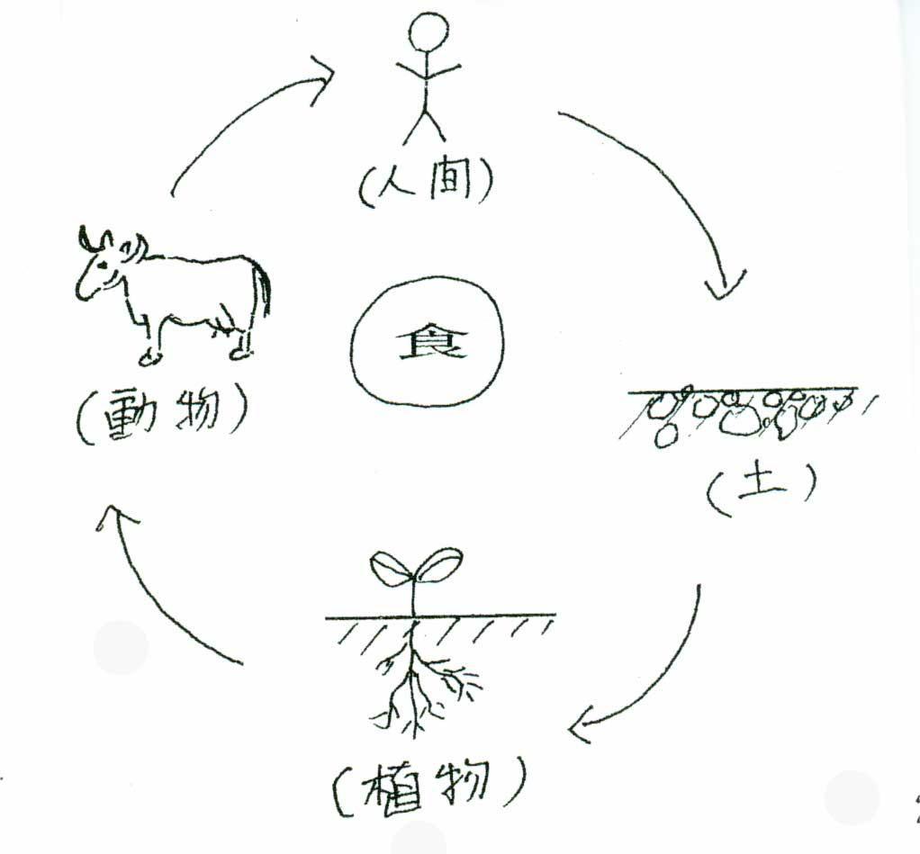 生命サイクル農業イメージ